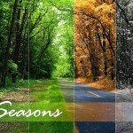 Understanding The Season & How To Respond